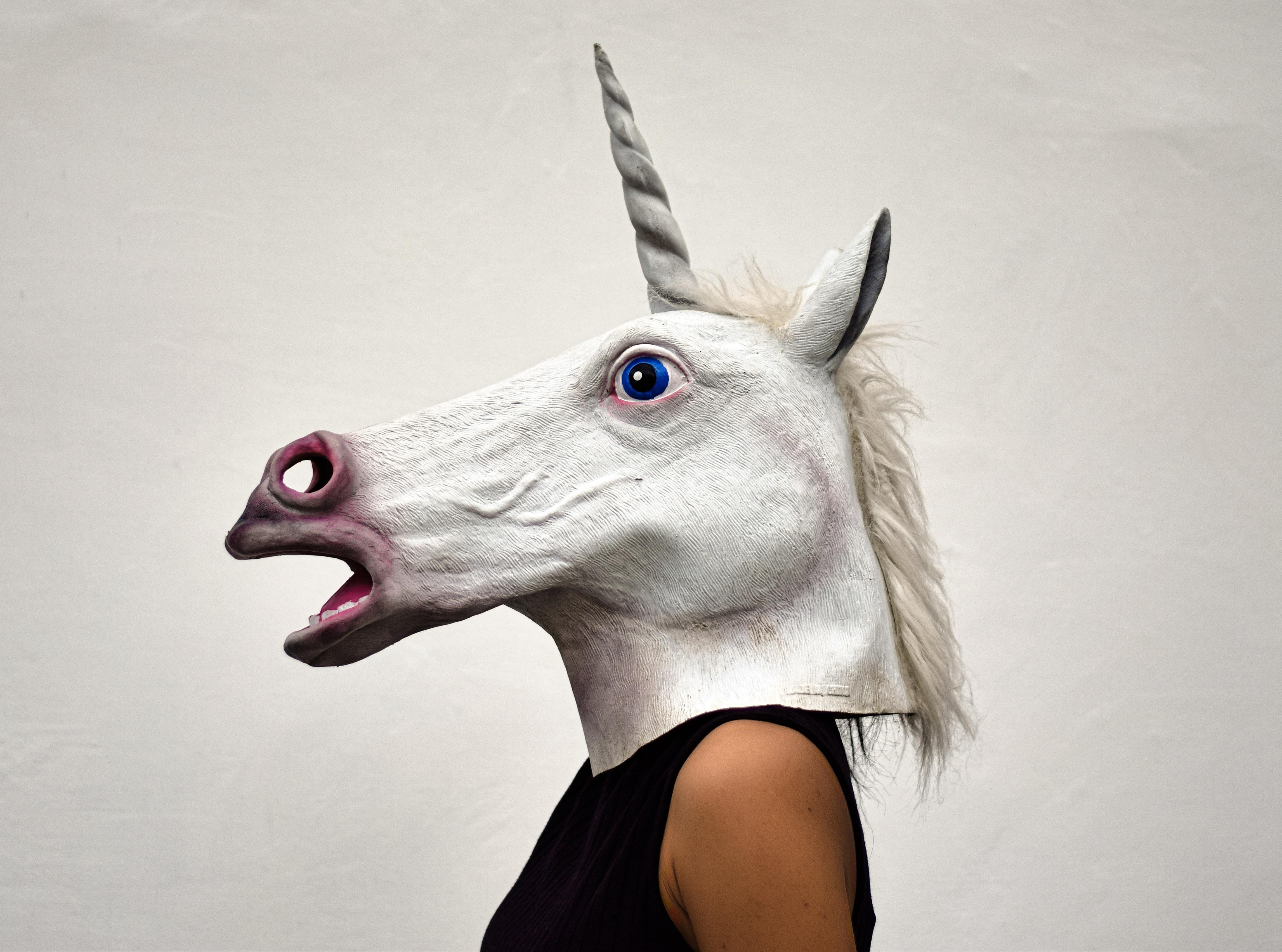 animal-art-costume-908686.jpg